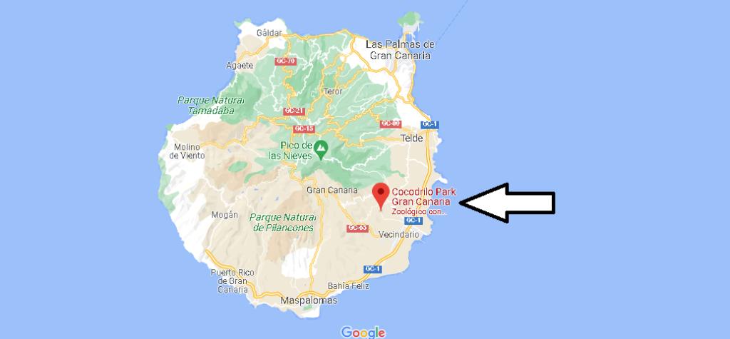 ¿Dónde está Cocodrilo Park Gran Canaria