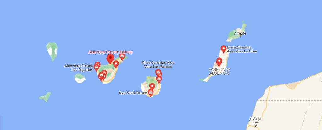 ¿Dónde está El Aloe Vera de las islas canarias